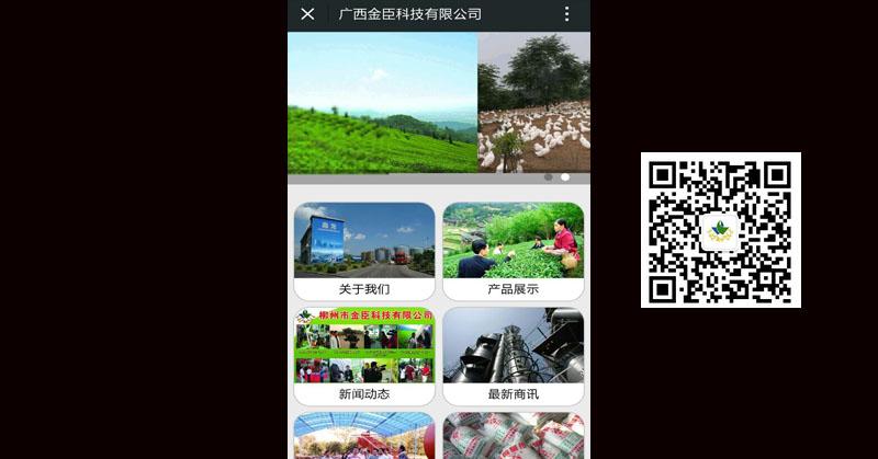 广西金臣科技有限公司
